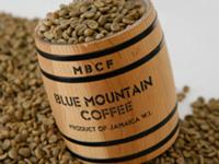 Зеленый кофе Blue Mountain